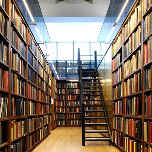 Библиотеки Васильсурска