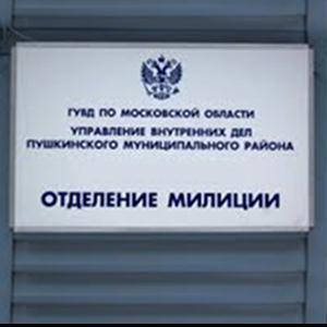 Отделения полиции Васильсурска