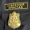 Судебные приставы в Васильсурске