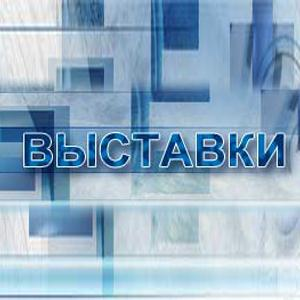 Выставки Васильсурска